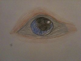 Wolf Eye by Shiverice