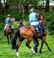 Horse Racing 450 by JullelinPhotography