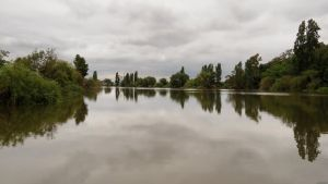 Overcast River by biffexploder