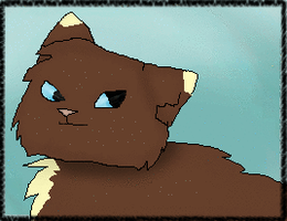Shiningwing request by RockpeltThunderClan
