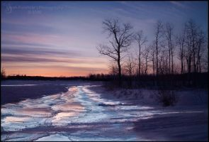 Driving The Dusk by Sarah--Lynne