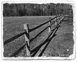 Along the Fence by JDM4CHRIST