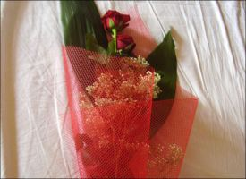 rose rosse per me by smokedval