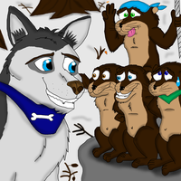 Clark the Husky meet the four Otters ^^ by valentinfrench