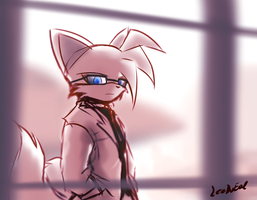 Dr. Tails by oLEEDUEOLo