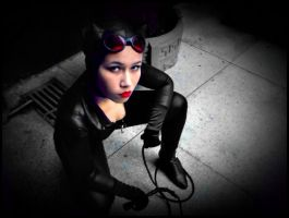 The Catwoman by ItsReah