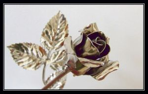 My rose, which never fades by katttinka