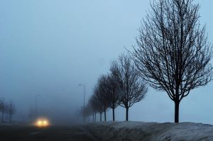 The Fog by cassxx