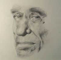 Bukowski by Fool-among-fools
