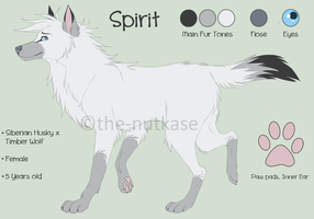 Spirit Reference Sheet by The-Nutkase