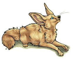 Fat Fluffy Fennec by InsaneRoman