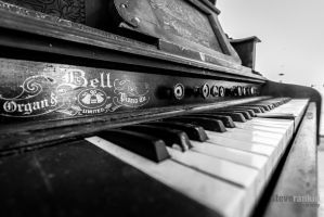 Bell Organ by steverankin