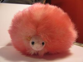 Pygmypuff 1 by Nightmare247Stock