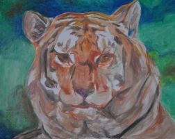 W.I.P. Tiger by EvelineVdp
