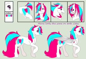 Sky Heart: Reference by amyaims