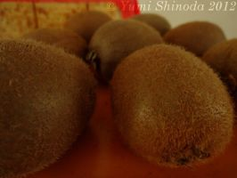 Rolling Kiwis by yumithespotter