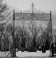 Sapling Hill Cemetery Edit by rayc33