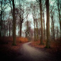 path by siby