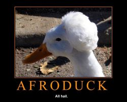 AfroDuck by jay4gamers1