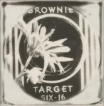 The Brownie Target by JillAuville