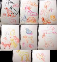 All Dog Breed Show sketches by kiki-doodle