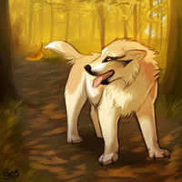 Fall Explorer by InstantCoyote