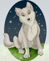baby wolf by adiAdii