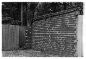 Photography Assignment 1b by gutter-child