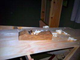 Plainly Planing the Boat by cocobolo