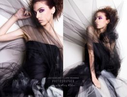 Tulle by JacquelineClare