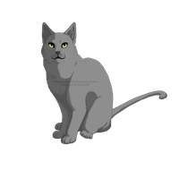 Cat + .PSD File by KendaWolf