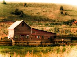 Leaning Barn by tjsviews