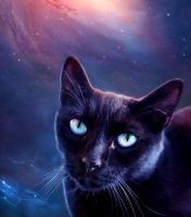 Astrocat by lorency