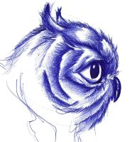 Owl Head  Sketch by theJorell