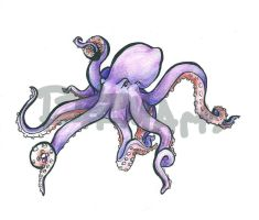 Octopuuussy. by Dizi-ramm-archive