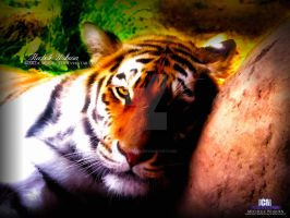Beauty Within A Tigress by ICMDesigned
