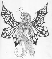 Solaine -- Catterfly -- 1.0 by timmydoomsqueaks