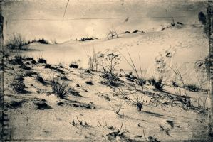 In The Sands.7 by Bobbyus