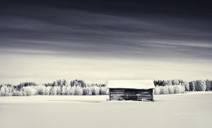 Fields Of Snow by Nitrok