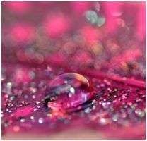pink by Serend1pity
