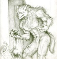 Werewolves need to like CHILL by canis-lupus