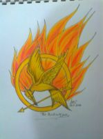 The Mockingjay by Outbreak2105