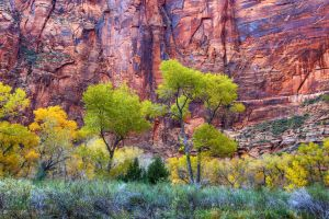 Zion Fall I by ernieleo