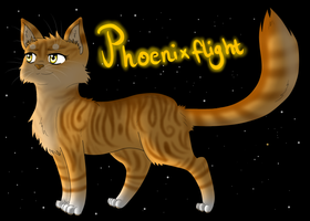 Request- Phoenixflight by xXFrostwhiskerXx