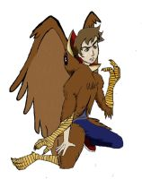 Hawk-Griffin-Style Costume TF by Fighting-Wolf-Fist