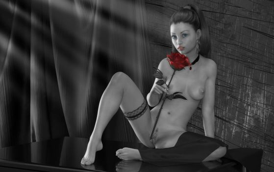 red rose by ziege58