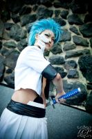 Bleach - Grimmjow Jeagerjaques 4 by LiquidCocaine-Photos