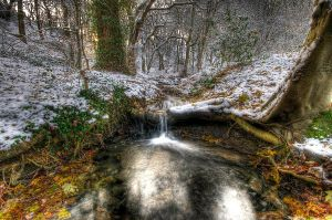 Winter's Cold Embrace by taffmeister