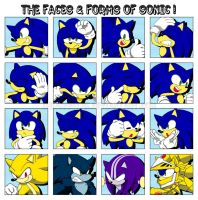 The Faces n' Forms of Sonic by ihearrrtme