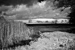 IR Galloway - Lochen by Okavanga